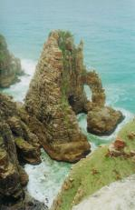 wild coast_2