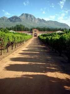 south-africa-red-wine