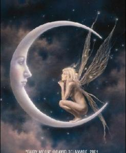moon fairy david de lamare
