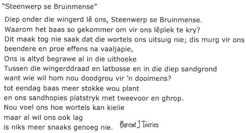 Barend_Toerien_Steenwerp_se_Bruinmense