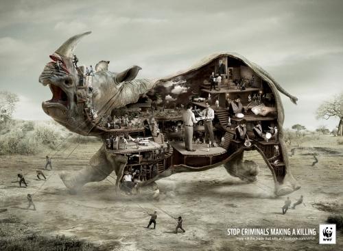 Rhino-Stop-Illegal-Wildlife-Trade